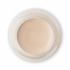 PHYTO-PIGMENT PERFECTING CONCEALER - FAIR