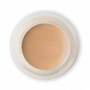 PHYTO-PIGMENT PERFECTING CONCEALER - SAND